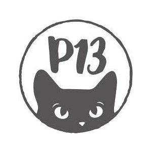 Carte P13